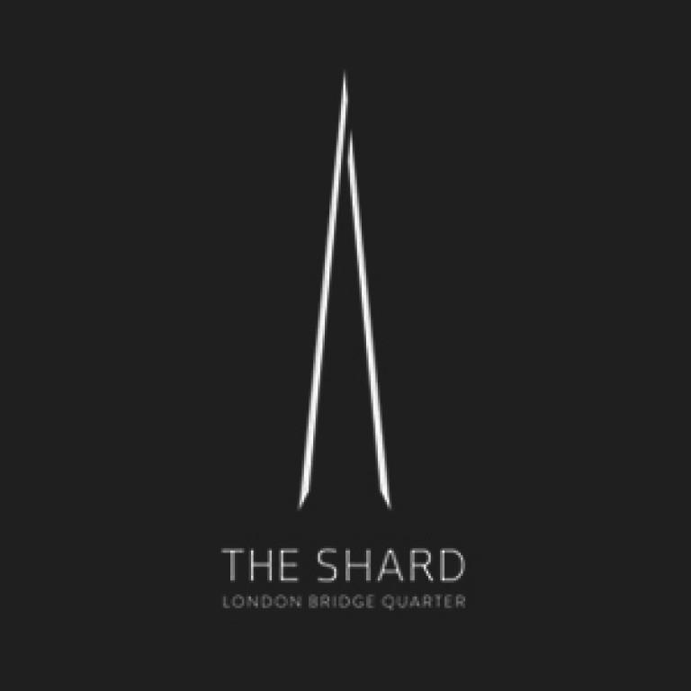 ZDE_shard